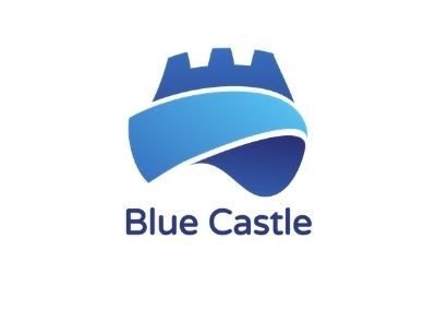 Blue Castle Accounts and Finance